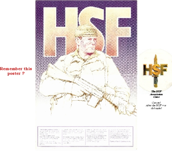 HSF Poster introduction